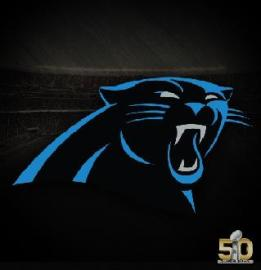 Panthers 50SB Small